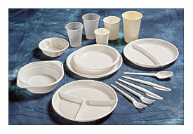 Paper Plates Related Keywords \u0026 Suggestions Wholesale Paper Plates . & Upscale Disposable Dinnerware   Towels and other kitchen accessories